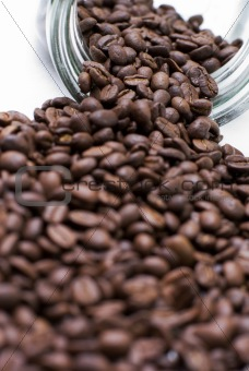 Coffee seeds