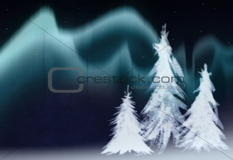 aurora borealis and fir trees collage