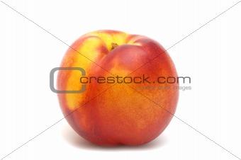 one nectarine on white background