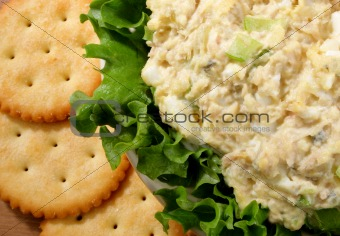 Bowl of tuna salad