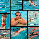 Swimming Collage