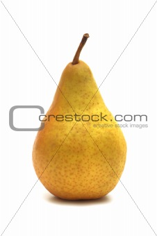 one yellow pear on white background