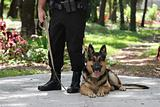 Police Dog 2
