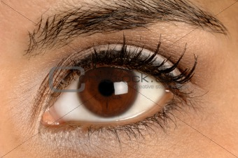 healthy brown eye Brown Eyes Iris