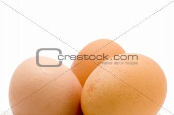 Three eggs close up