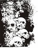 Floral skulls vector illustration