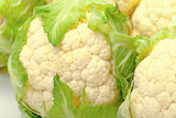 Heads of Cabbage Cauliflower