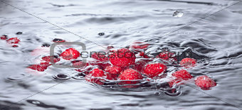 Red Raspberries Dropped into Water with Splash
