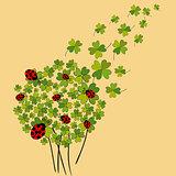 Lucky spring clover