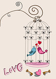 Valentine couple bird love