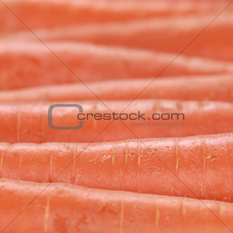 Carrots in a row forming a background