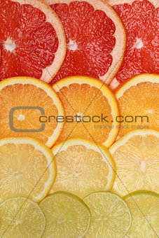Background from lemons, oranges, grapefruits and limes