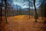 Gallows hill in Ribe, Denmark