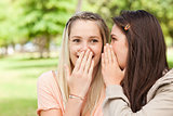 Close-up of teenagers sharing a secret