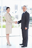Business people standing upright while shaking hands and smiling