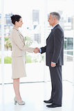 Business people warmly shaking hands while looking at each other