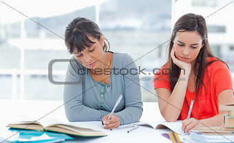 Two students doing homework together