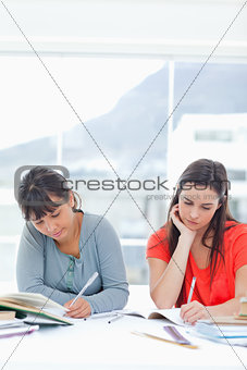 A pair of concentrating women doing homework together