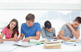 Four students sit beside each other and study