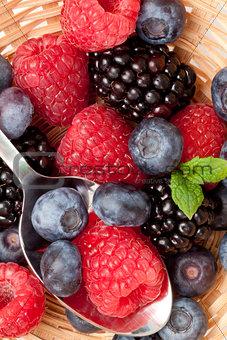 Berries  eating in a basket