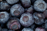 Heap of blueberry