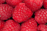 Heap of raspberry