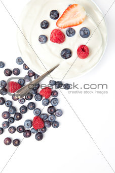 Bowl of cream with fruits