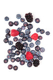 Raspberries and blueberries and blackberries