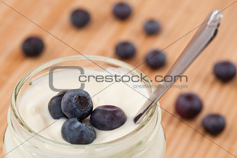 Close up of a pot of yoghurt with blueberries displayed behind