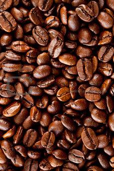 Close up of coffee seeds