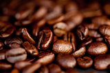 Blurred coffee seeds laid out together