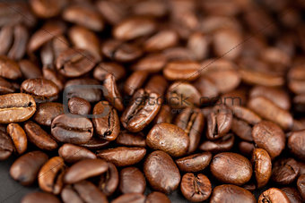Beans of coffee laid out together
