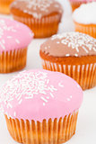 Close up of many muffins with icing sugar