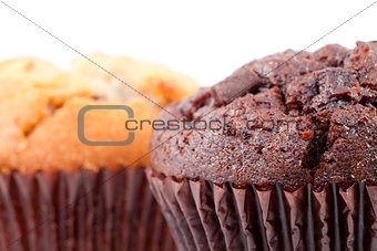 Close up of chocolate muffin and a regular muffin