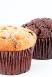 Close up of two fresh baked muffins