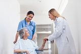 Patient in a wheelchair holding hand of a doctor