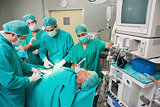 Surgical team operating a patient belly
