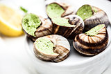 Escargots