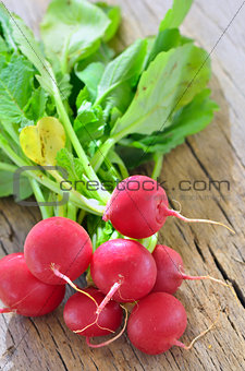 Small garden radish isolated on old wooden background