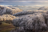 "Mountain viewat ""Piatra Craiului"" Romania with frosty trees"