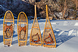 vintage snowshoes