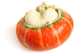 Orange decorative pumpkin