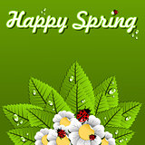 Happy Spring leaves background