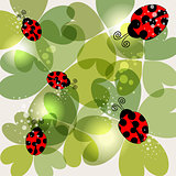Transparent clover and ladybug background