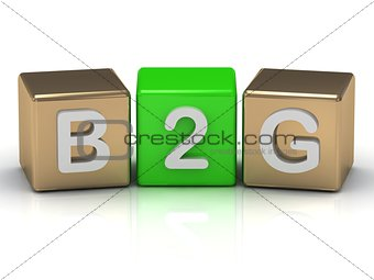 B2G business-to-government symbol on gold and green cubes