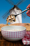 Muesli breakfast in a bow and spoon