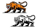 Aggressive tiger
