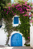 Blue doors and white wall of Sidi Bou Said, Tunisia