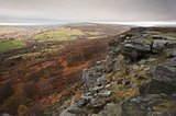 Landscape of Autumn Fall in Yorkshire Dales National Park