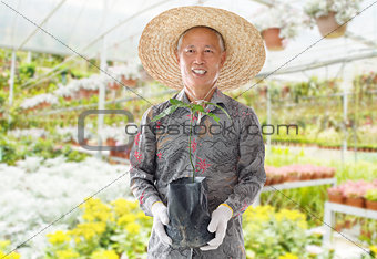 Asian Chinese farmer